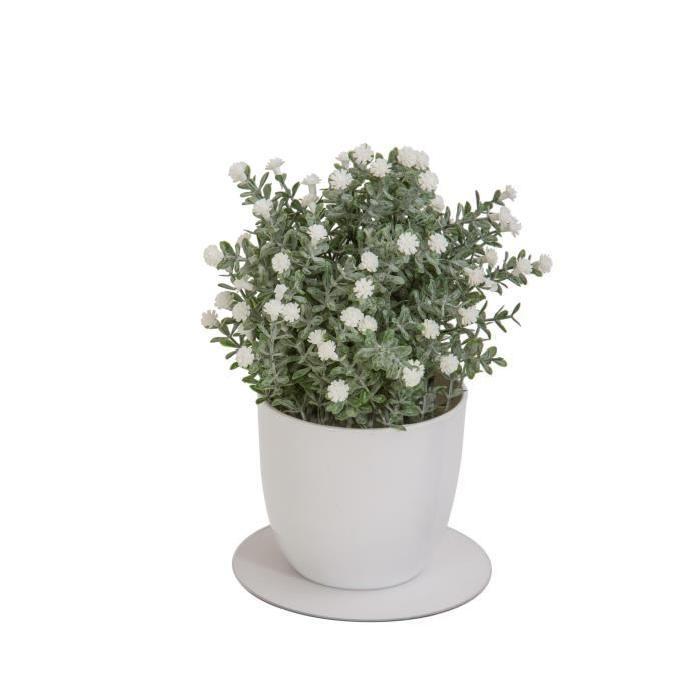 Plante grasse artificielle fleurie Blanche - En pot Blanc - Hauteur 22 cm