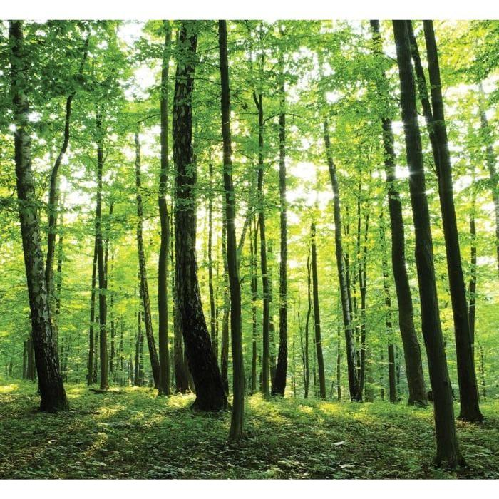 FORET Poster XL 276x254 cm